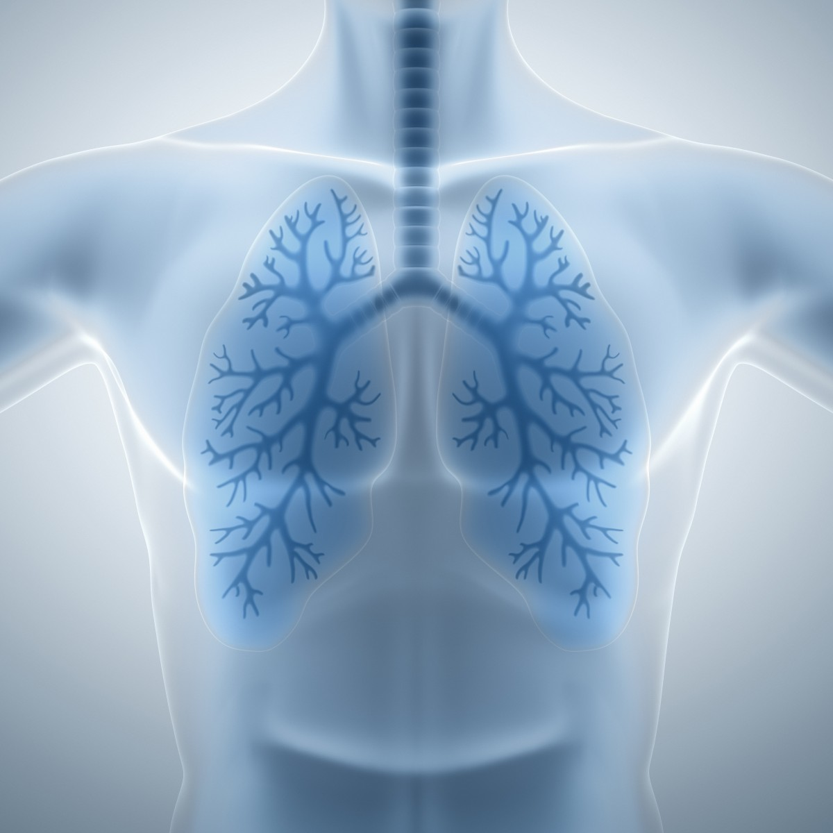 Prolonged Use of Macrolides Improved Non-CF Bronchiectasis Patients' Quality of Life in Study