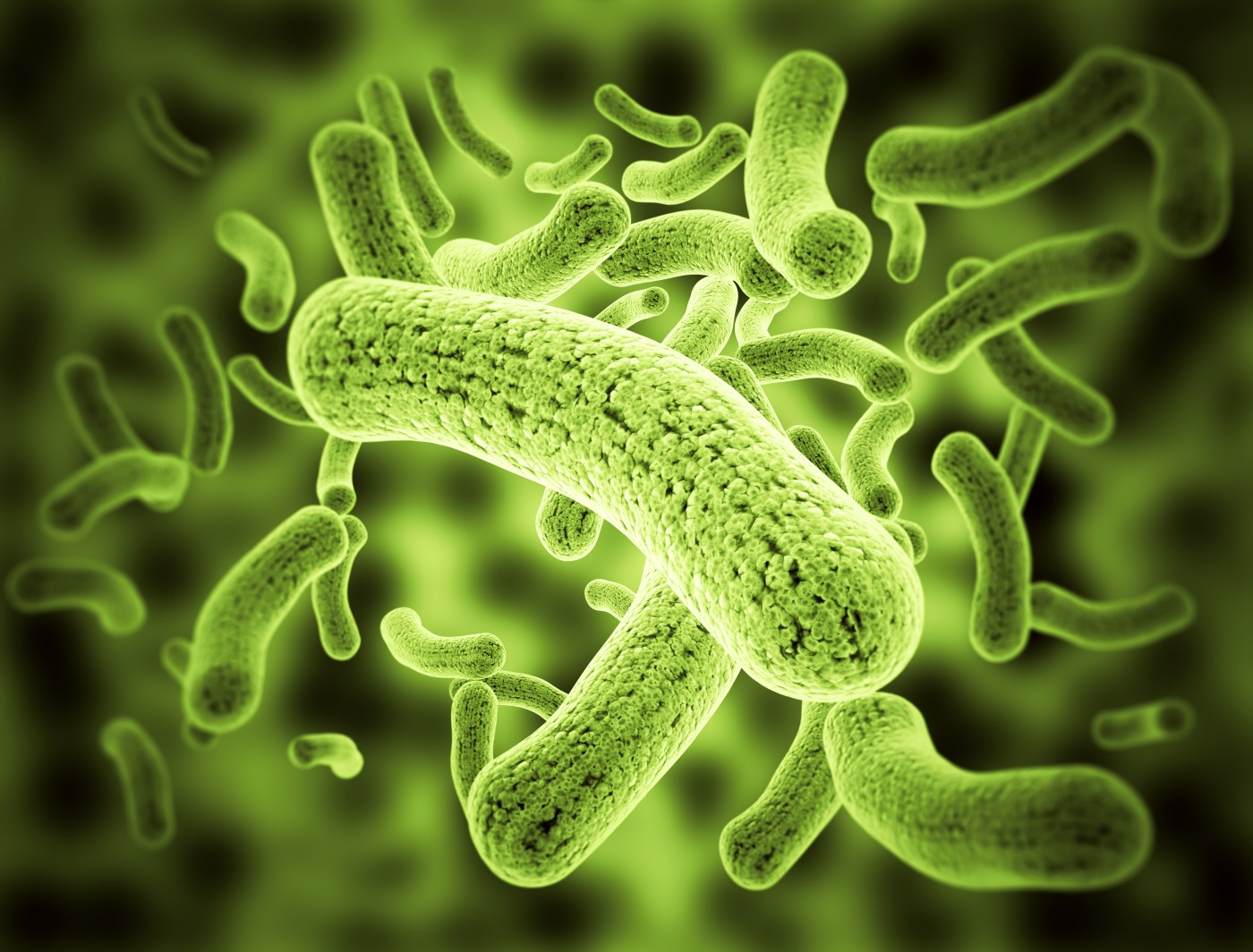 Review Highlights Link Between Non-Cystic Fibrosis Bronchiectasis and Nontuberculous Mycobacteria