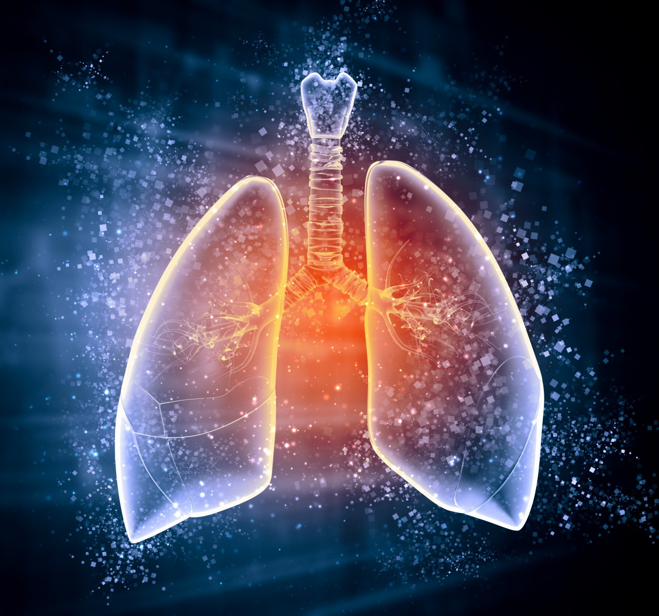 Treatment Algorithm Centered on Chest Physiotherapy May Minimize Lung Function Decline, Study Says