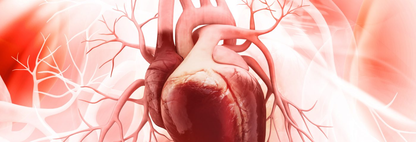 Bronchiectasis Patients Have Higher Risk of Cardiovascular Disease, Study Finds